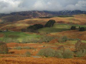 english homestay, scotland, walking near crieff