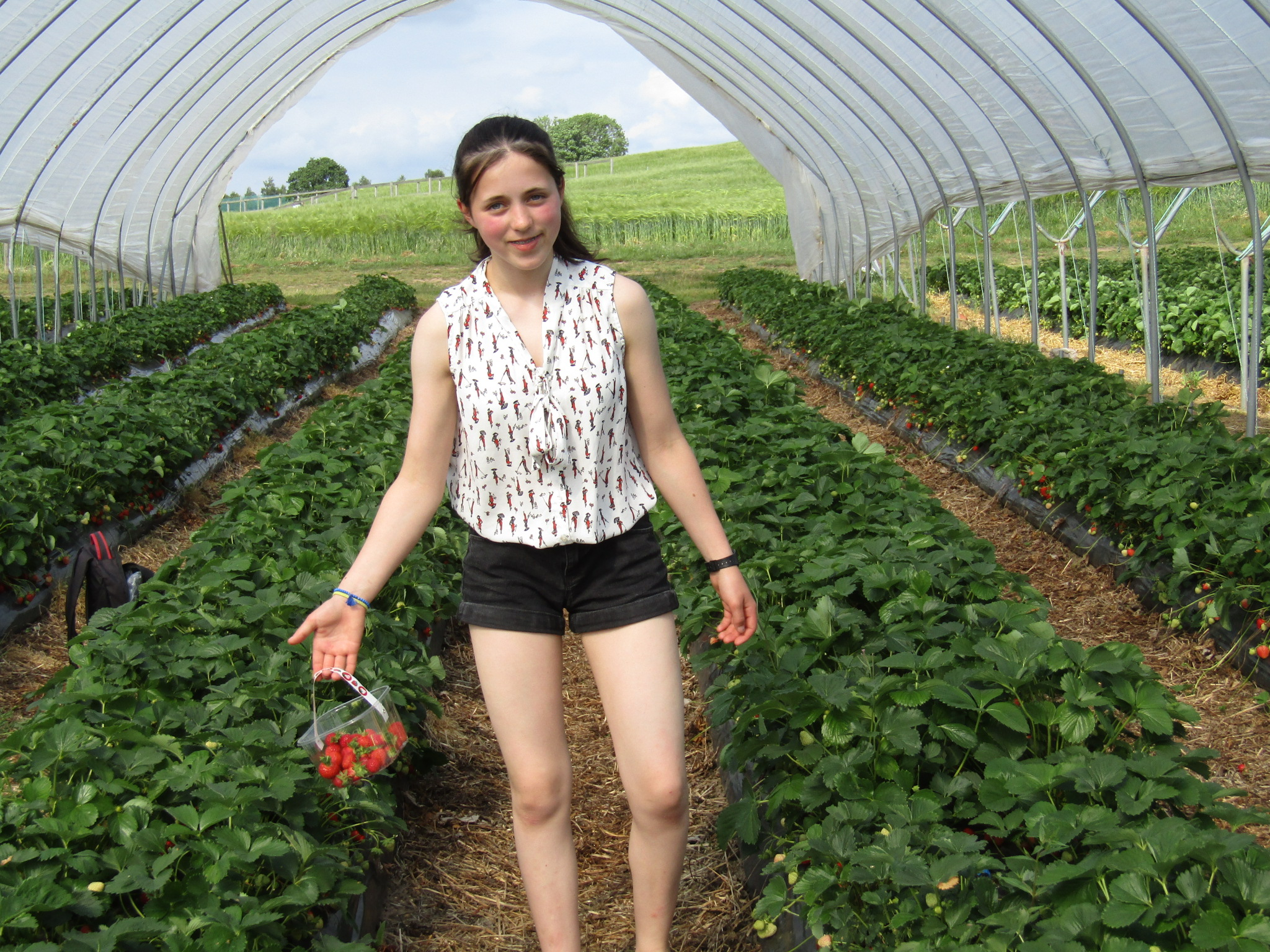 Strawberry picking - english course in scotland